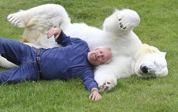 Man_Polar_Bear_2