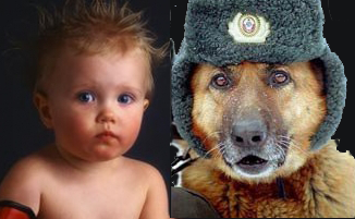 Дитё_и_собака