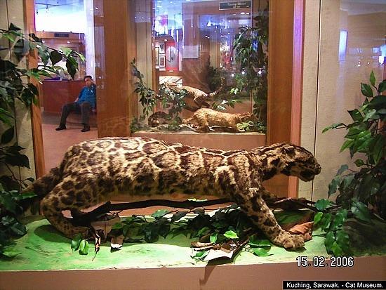 kuching_cat_museum_23