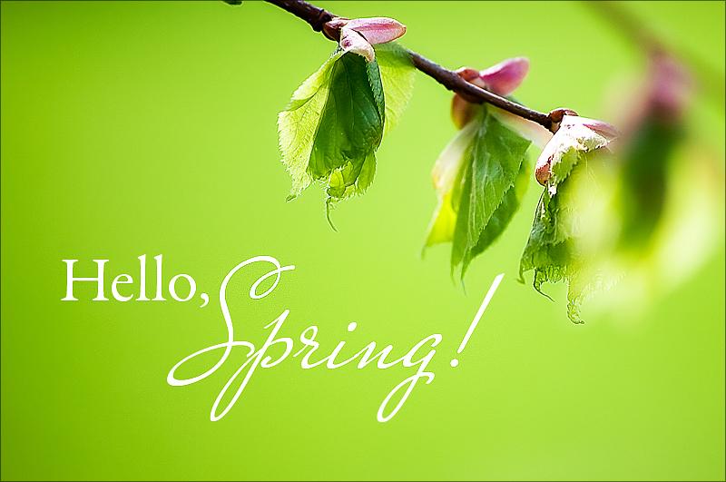 Детская картинка с надписью весна, марта
