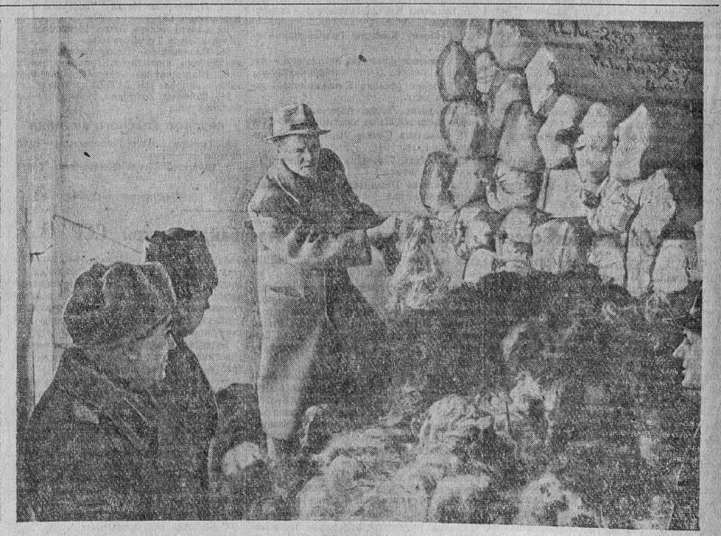 Семь тысяч килограммов волос, снятых немцами со 140 убитых женщин и подготовленных к отправке в Германию
