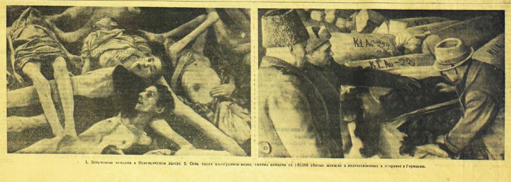 «Красная звезда», 8 мая 1945 года, концлагерь Освенцим, зверства фашистов