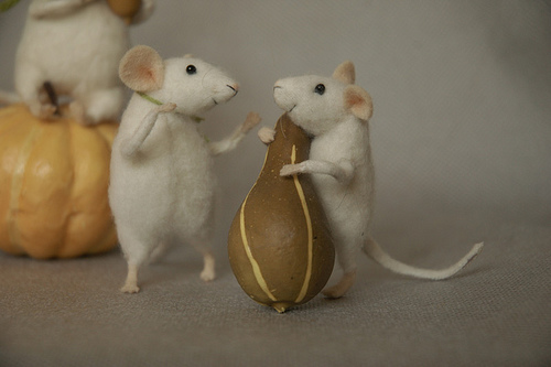Коллекция мышей
