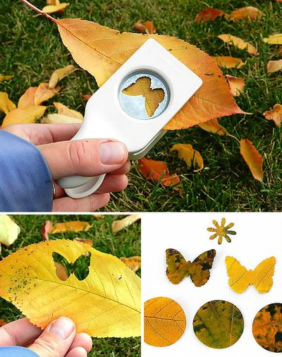 1-diy-nature-leaf-projects
