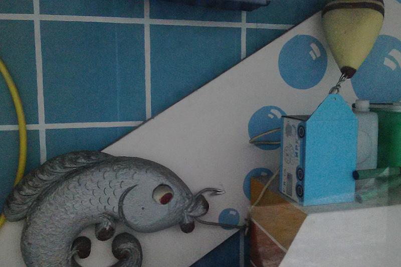05-winfish