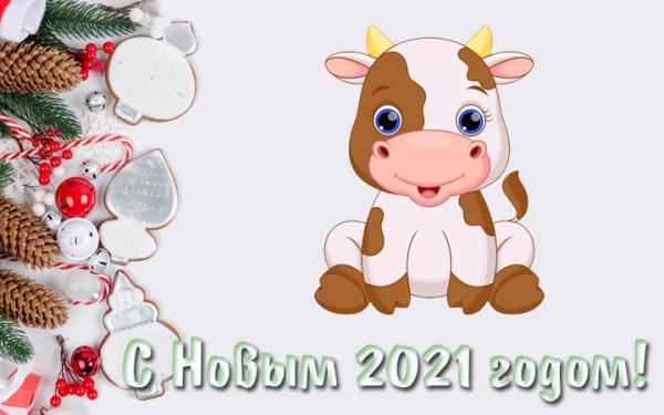 kartinki-na-novyj-2021-god-31