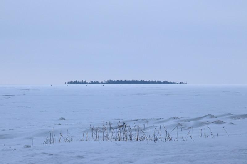 Остров Голомянный