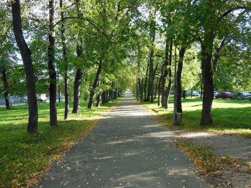 Левашовский бульвар в сентябре