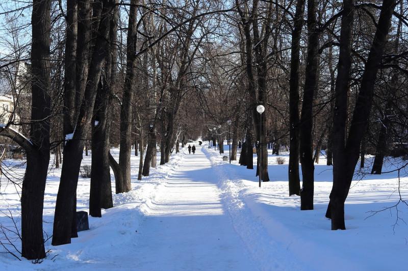 Левашовский бульвар в марте