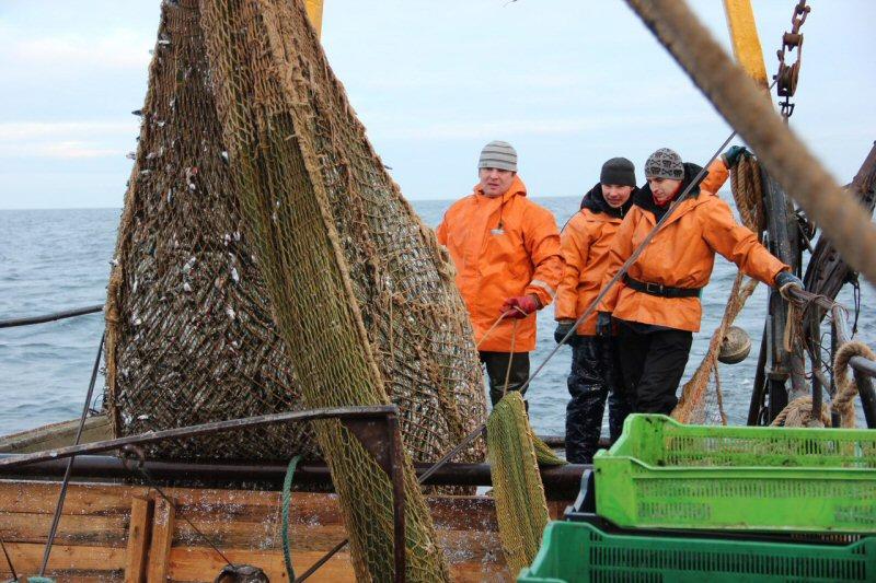 на что ловить сельдь в море