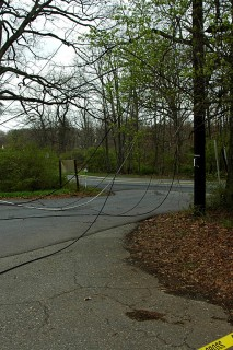 wires down