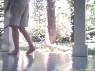 sacre du printemps - lavage du porch