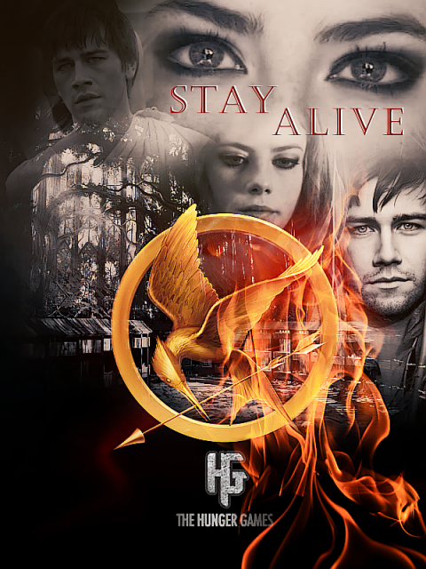 The Hunger Games Teaser Banner Themockingjay Livejournal