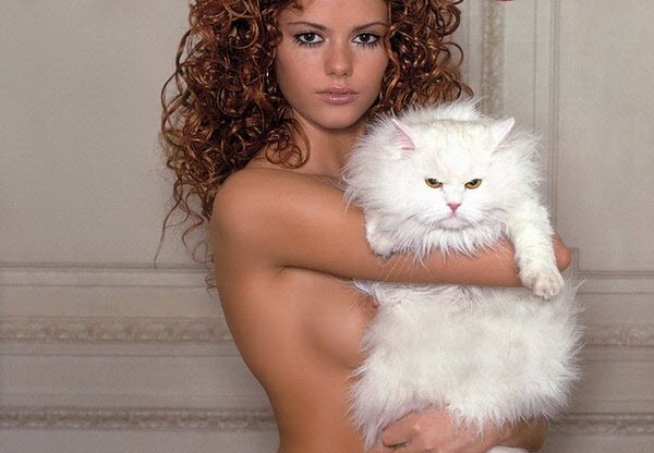 Секс и кошки.