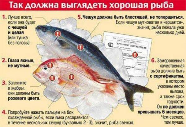 Хорошая рыба