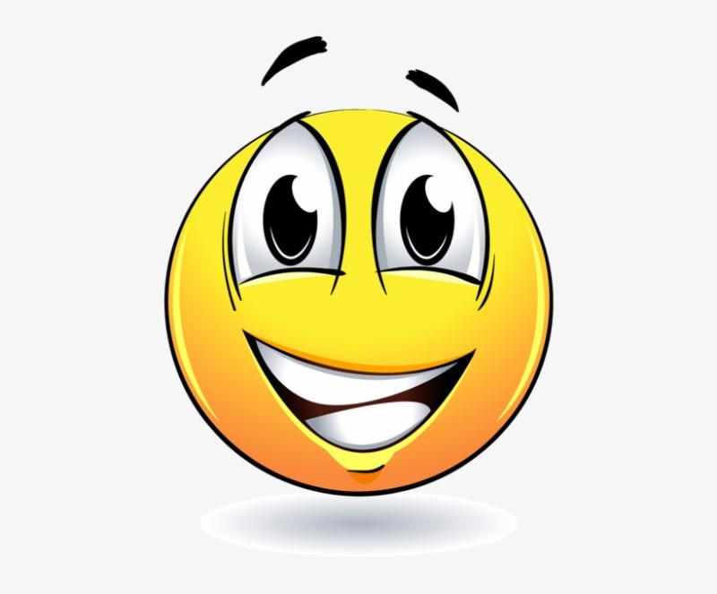 424-4244752_-emoji-braai-liedjies-cd.png