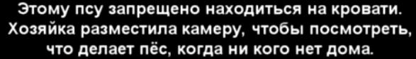 24r5y7