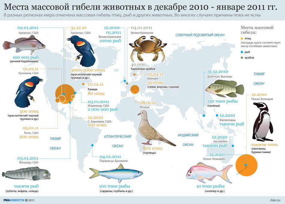 случаи массовой гибели диких животных