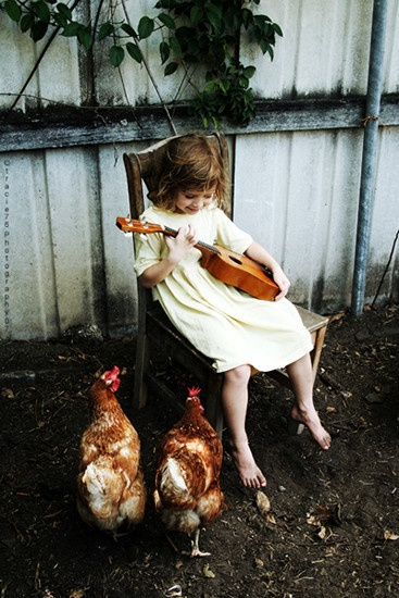 singing to chickens