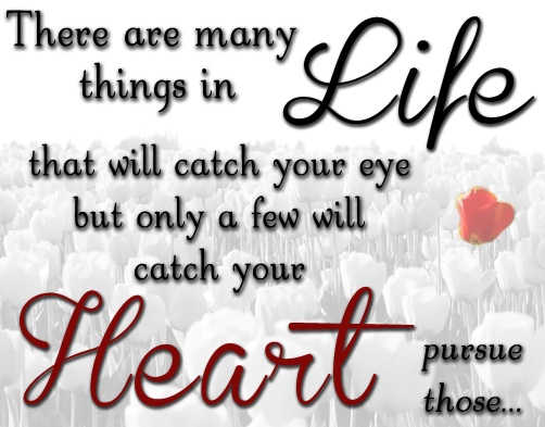 pursue those