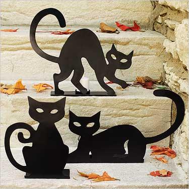 3cats