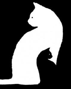 белый-и-черный-кот-239x300