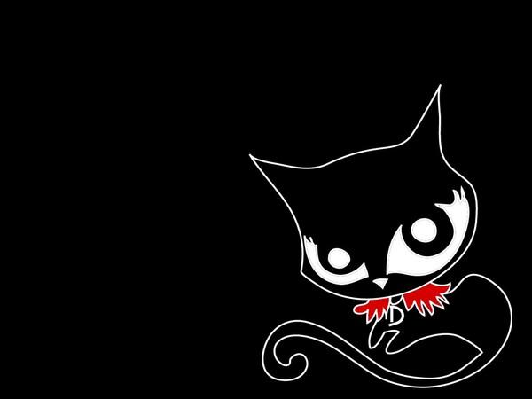 голлантный котик
