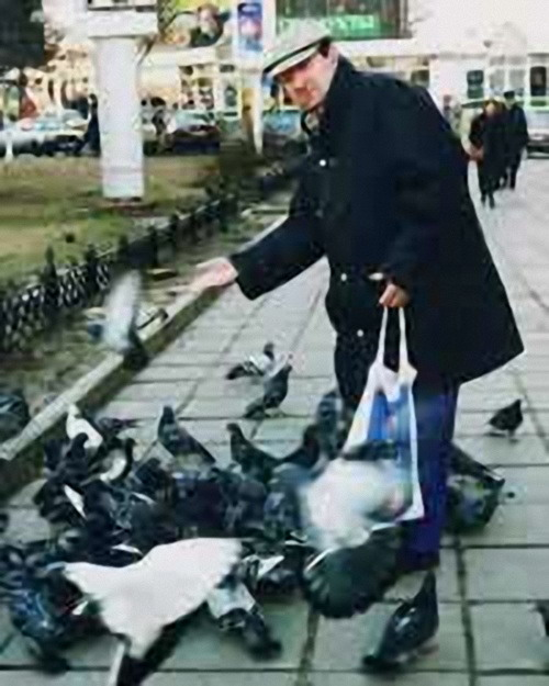 vitzin-birds2