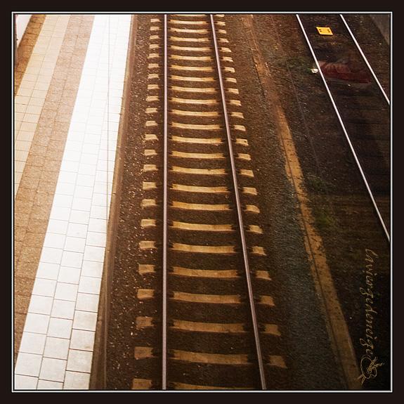 DSC_7125-cut-003