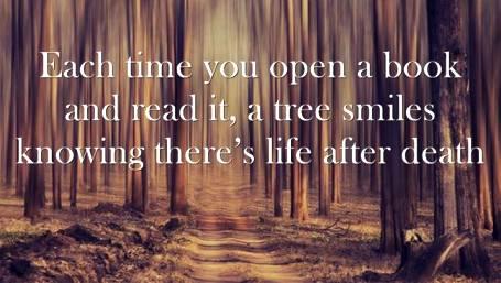 ____книга и дерево