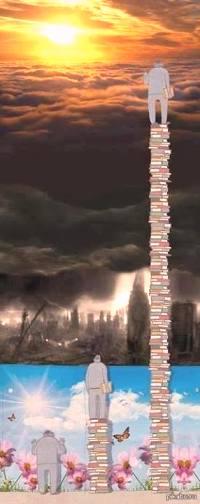 куда ведет книга