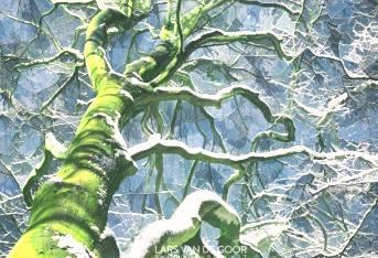 Winter branches....... by Lars Van de Goor