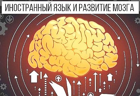 иностранный языка развивает мозг в 6 направлениях