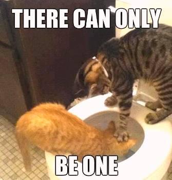 ____только один 2