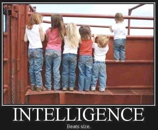 ____intelligence