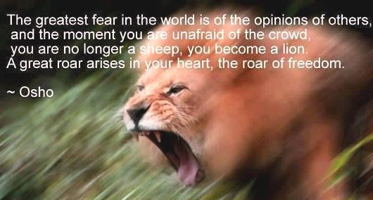 fact lion