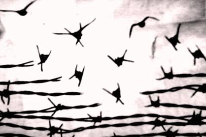 ___птицы из проволоки