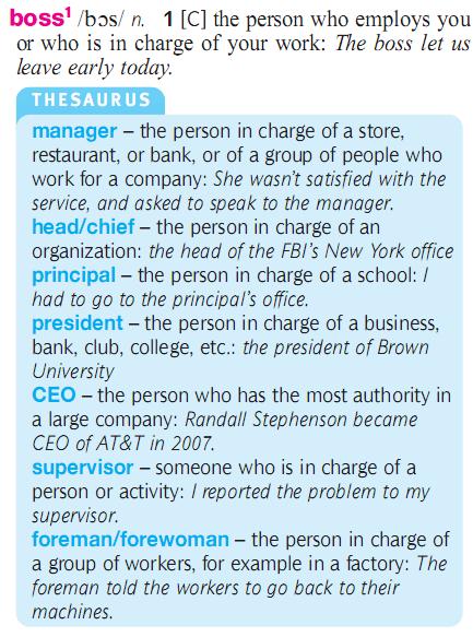 boss - manager - chief - principal - CEO - supervisor. разница