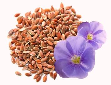 __притча о семенах