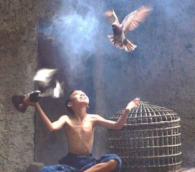 ___птица в полете