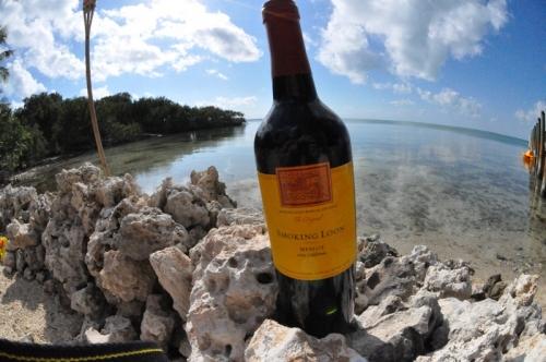 вино на берегу№21