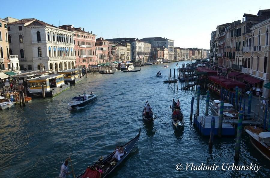 Переполох в Венеции