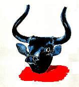 bull_b