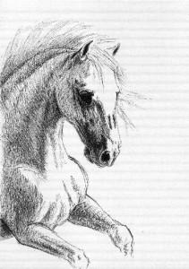 horse3b