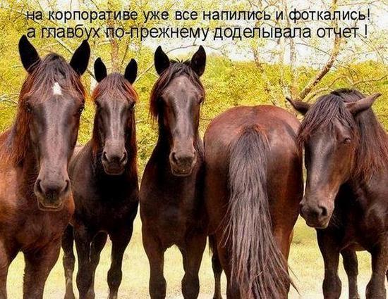 prazdnik-bukhgaltera