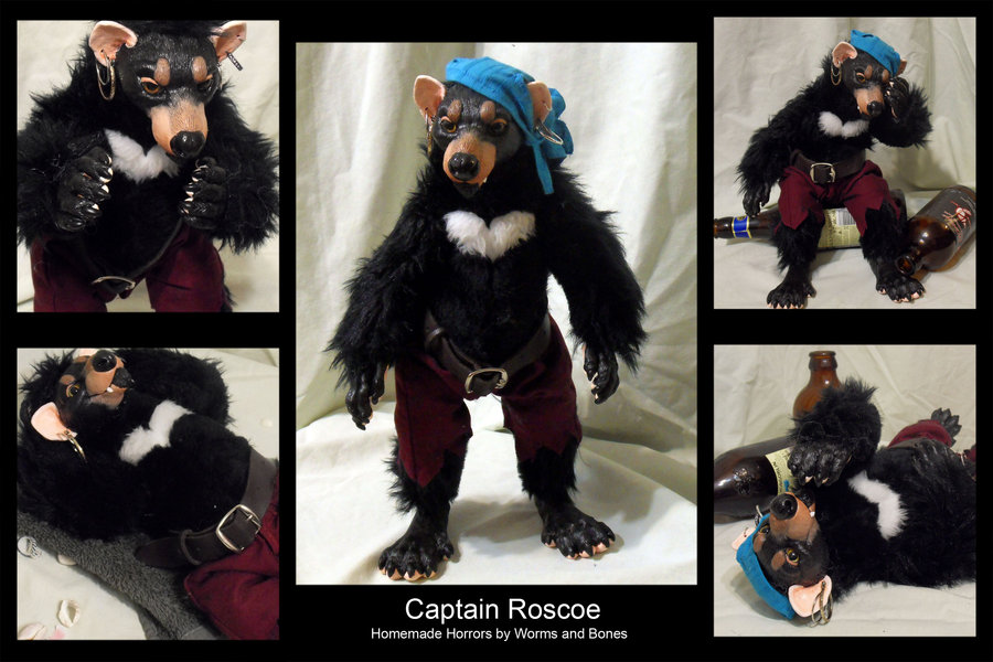 captain_roscoe_by_wormsandbones-d56wq9c
