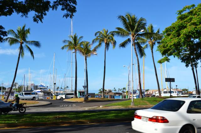 Один день на Гавайях.