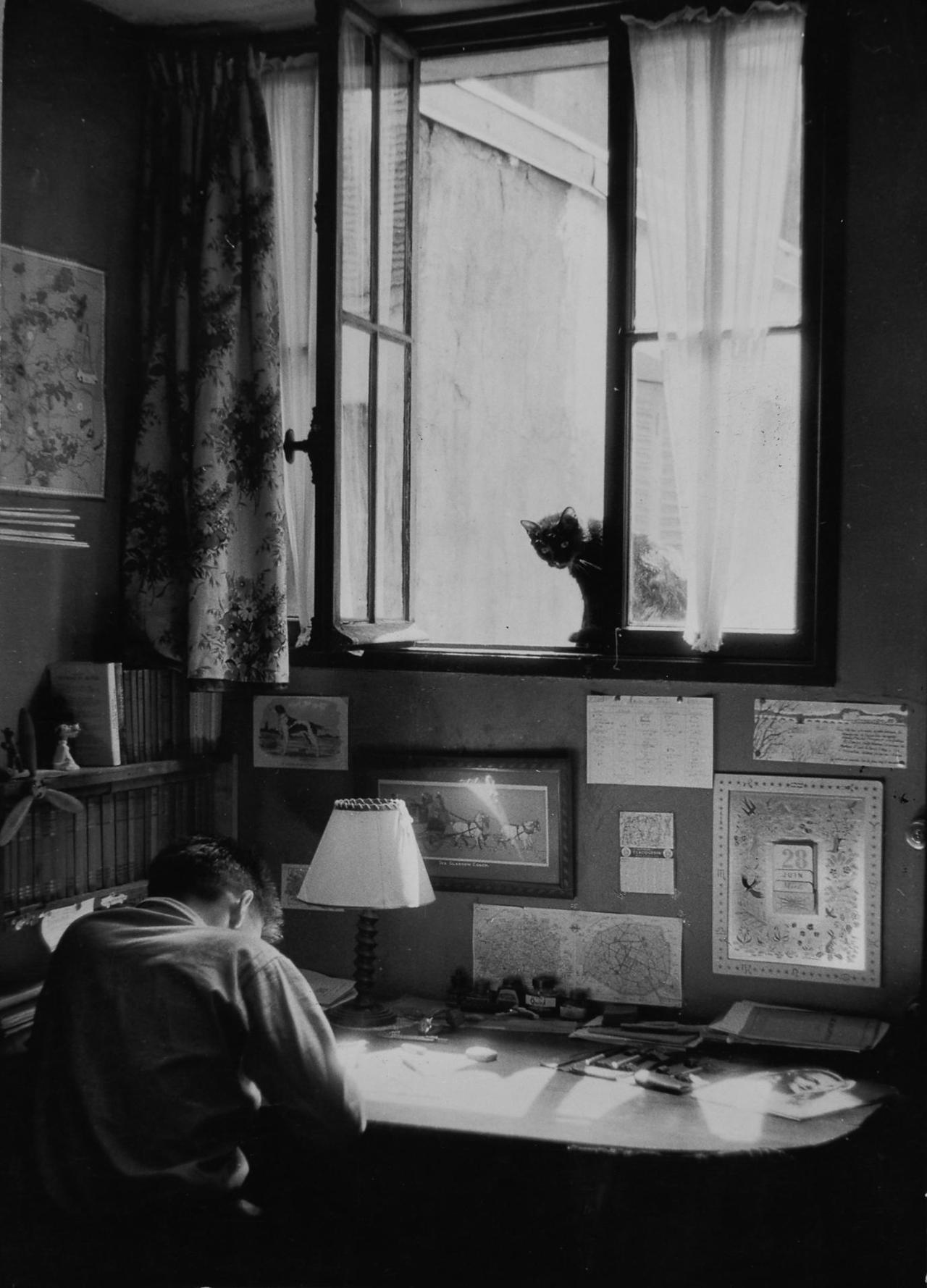 париж 1955