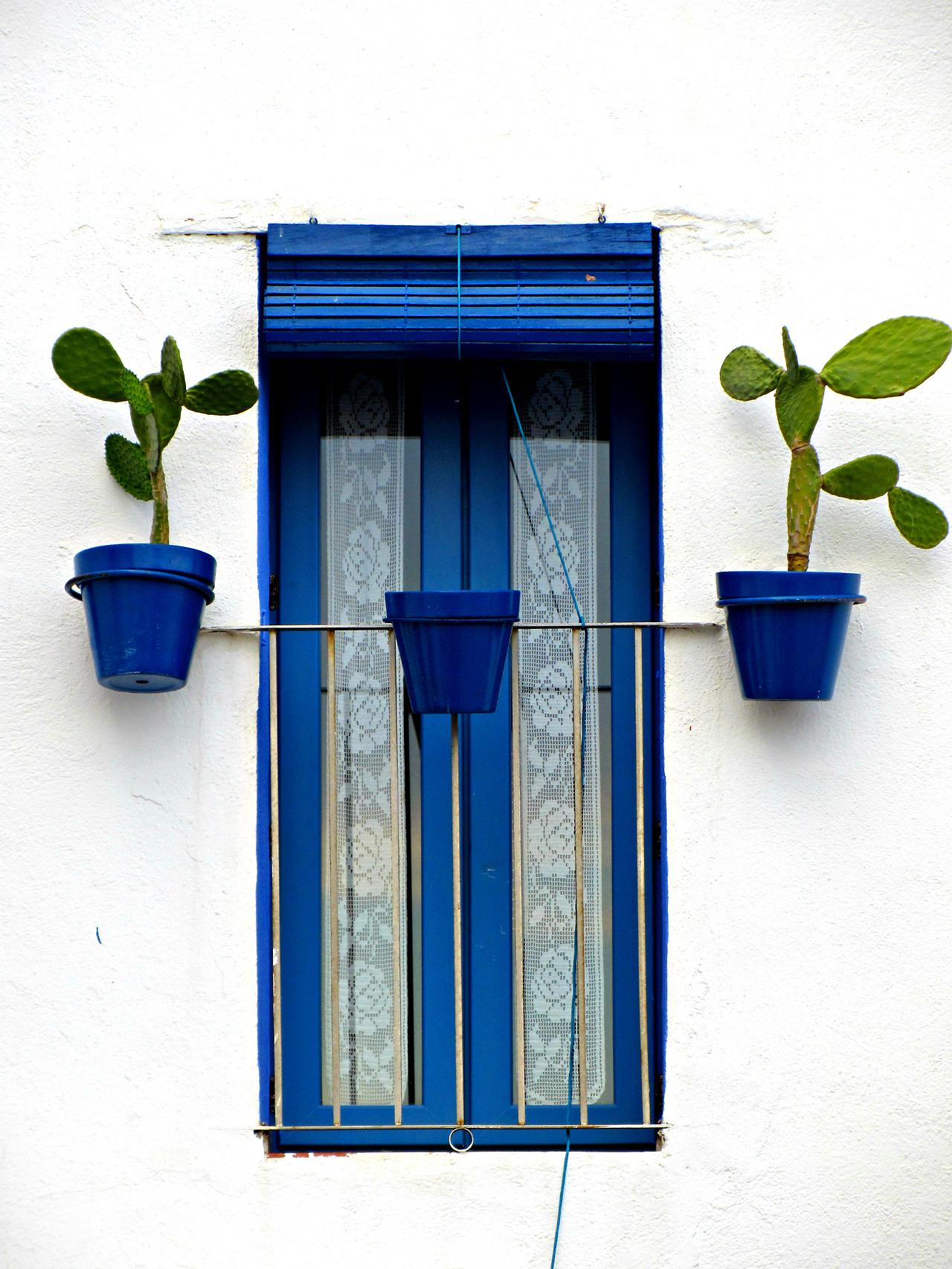 окно синее