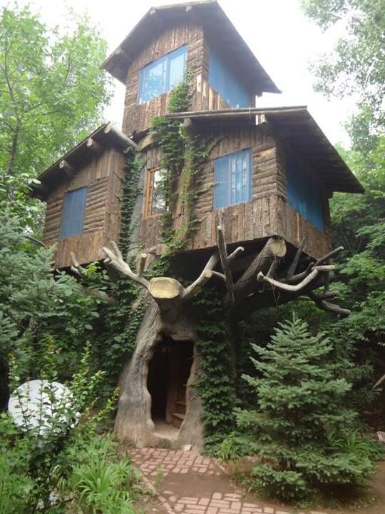 скромное эльфийское жилище